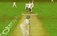 Final Cricket Test