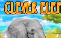 Clever Elephant